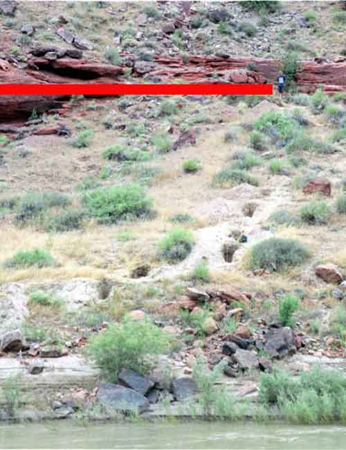 Excavating slackwater deposits on the Colorado River above Moab, Utah. Red line is the elevation of Probable Maximum Flood (~350,000 cfs), which has occurred twice in the last 2,000 years.